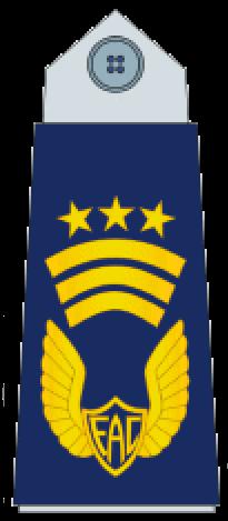 знаки различия ВВС Колумбии