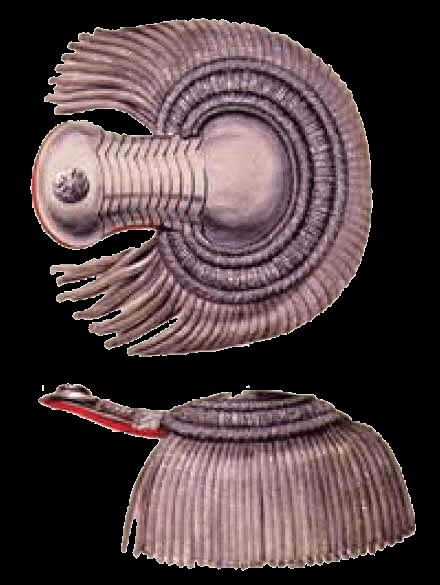 Эполеты штаб-офицера образца 1837 года.
