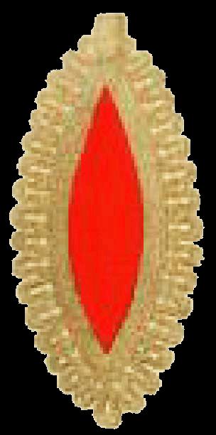 Язык к шлему офицера л.-гв. Кавказско-Горского полуэскадрона, 1830-1881 годы.