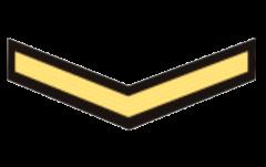 знаки различия военно-морских сил Бахрейна