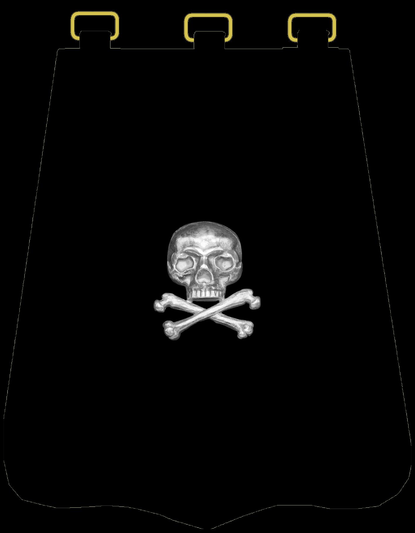 Ташка офицера 17 уланского полка.