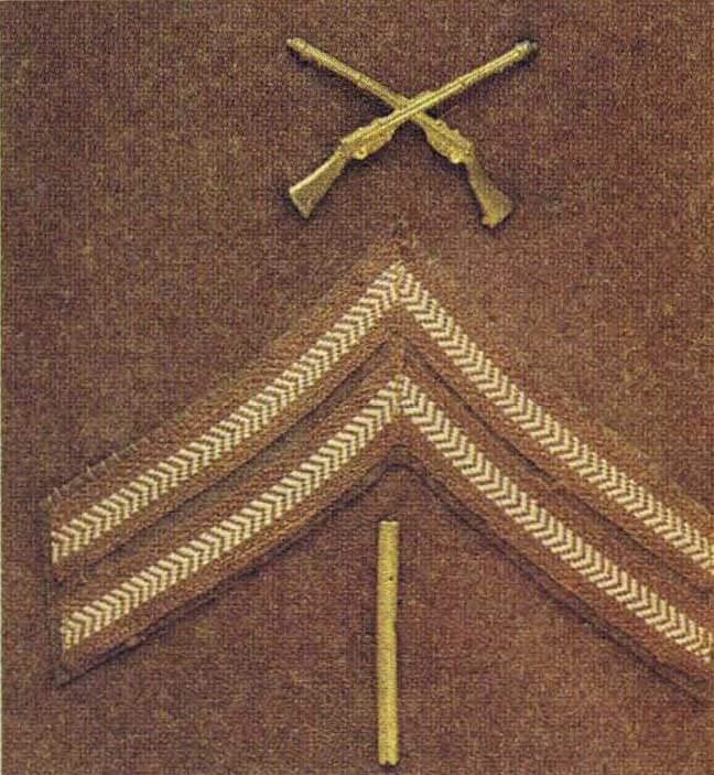 Знаки отличия в нижней части левого рукава