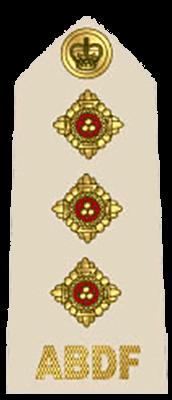 Знаки различия Сил Обороны Антигуа и Барбуда (RABDF)