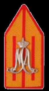 Униформа сухопутных войск Нидерландов образца 2003 года
