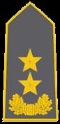 Знаки различия сухопутных войск Албании