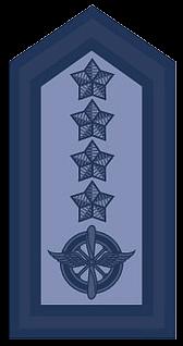 Знаки различия ВВС Аргентины