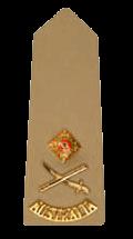 Знаки различия сухопутных войск Австралии
