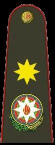 генерал армии (Ordu generalı)