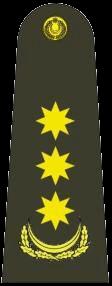 полковник (Polkovnik)