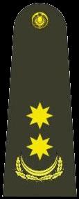 подполковник (Polkovnik-leytenant