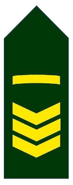 Знаки различия унтер-офицеров и сержантов армии Бангладеш