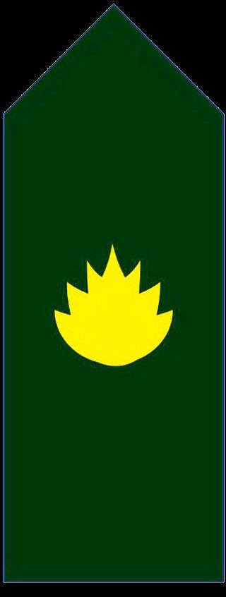 Знаки различия генералов и офицеров армии Бангладеш