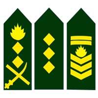 Знаки различия армии Бангладеш
