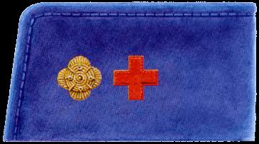 Униформа войск Центральной Рады