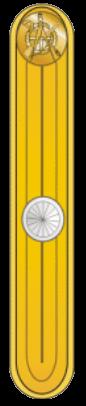 Знаки различия сухопутных войск Дании 1916-1922 годов