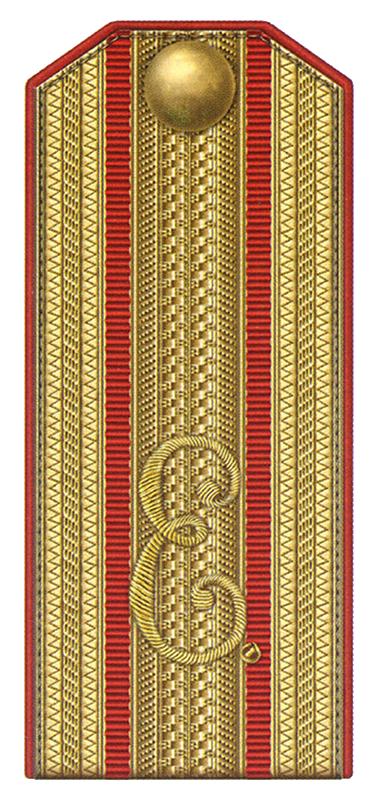 Погон начальника Елисаветградского кавалерийского юнкерского училища с 1865 по 1868 годы.
