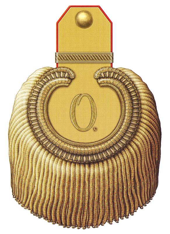 Эполет начальника Елисаветградского кавалерийского юнкерского училища (полковник, числящийся по армейской кавалерии) с 1868 по 1901 годы.
