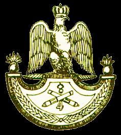 ниформа пешей артиллерии Наполеона