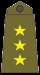 Знаки различия генералов и офицеров сухопутных войск Ирака