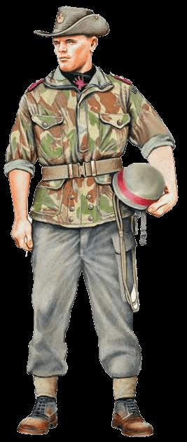 униформа армии Конго