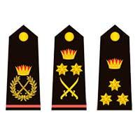 Знаки различия ВМС Бахрейна