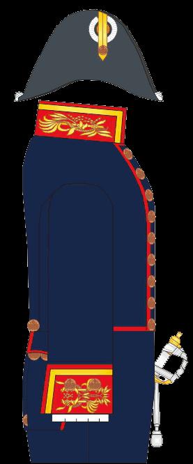 Гражданский чиновничий мундир надворного советника, профессора Морского Кадетского Корпуса. 1826-1837 годы.