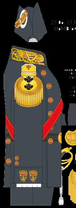 Мундир парадной формы вице-адмирала, Директора Морского Училища – Морского Корпуса, 1881-1891-1914 годы.