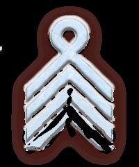 Знаки различия Сечевых стрельцов