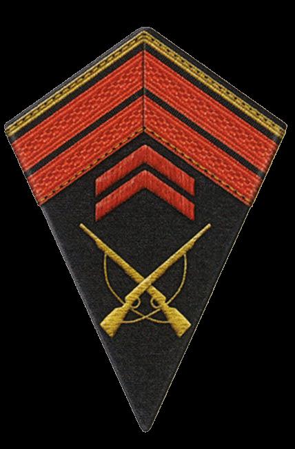 Знаки различия унтер-офицеров и сержантов армии Сенегала