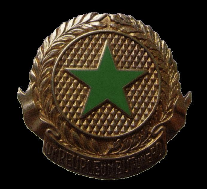 Эмблема на берет военнослужащих вооруженных сил Сенегала.