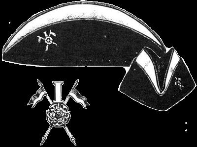 униформа: Кавалерийский полк Скиннера