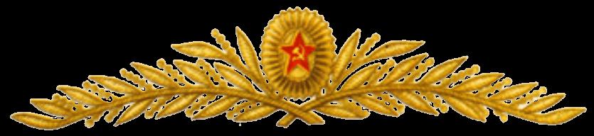 Кокарда и шитье на парадной фуражке главных маршалов, маршалов родов войск и генералов (кроме авиации)