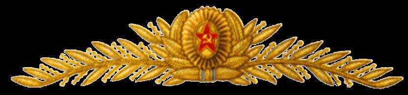 Кокарда и шитье на парадной фуражке главных маршалов, маршалов и генералов авиации