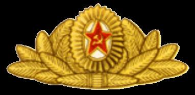 Кокарда к парадной и парадно-выходной фуражке офицеров и сержантов сверхсрочной службы
