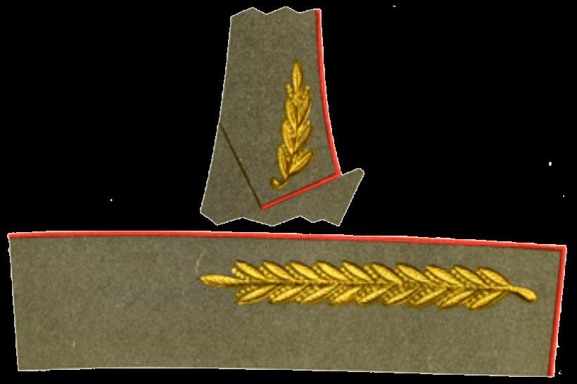 Парадно-выходное обмундирование главных маршалов, маршалов родов войск и генералов