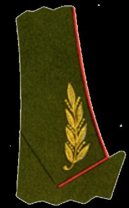 Шитьё на воротнике повседневного кителя главных маршалов, маршалов родов войск и генералов