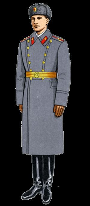 Зимняя парадная форма одежды для строя офицеров (кроме авиации и ВДВ).