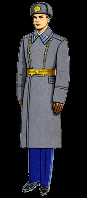 Зимняя парадная форма одежды офицеров авиации и Воздушно-десантных войск