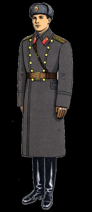 Зимняя полевая форма одежды офицеров и сержантов сверхсрочно службы.