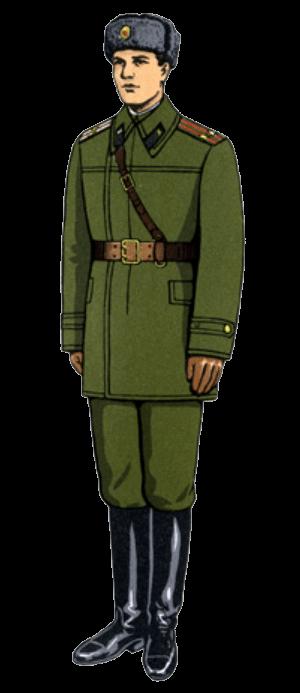 Зимняя полевая форма одежды офицеров и сержантов сверхсрочной службы (в куртке утепленной).
