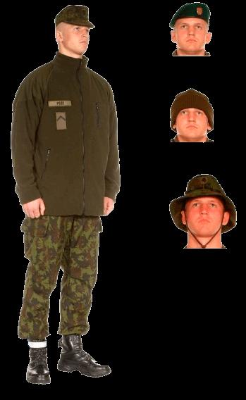 униформа сухопутных войск вооруженных сил Литвы