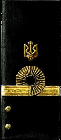Знаки различия офицеров ВМС УНР