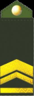 знаки различия сухопутных войск Украины