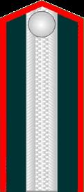 Униформа Императорской Военно-Медицинской академии
